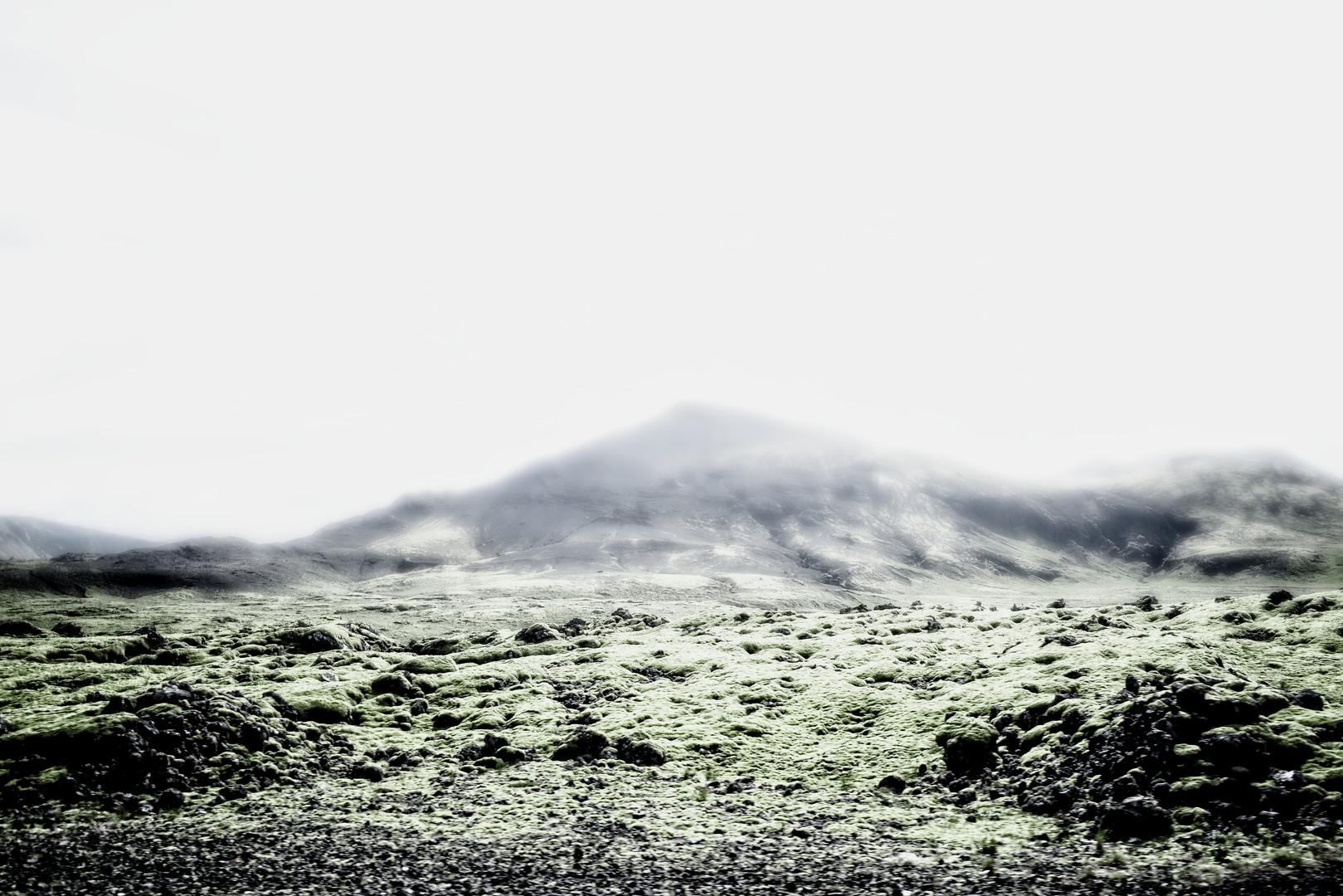 natura 1.jpg