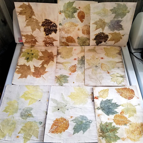 Fall Leaves Dyed Card Stock