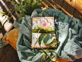 Suzi Q's Garden Journal
