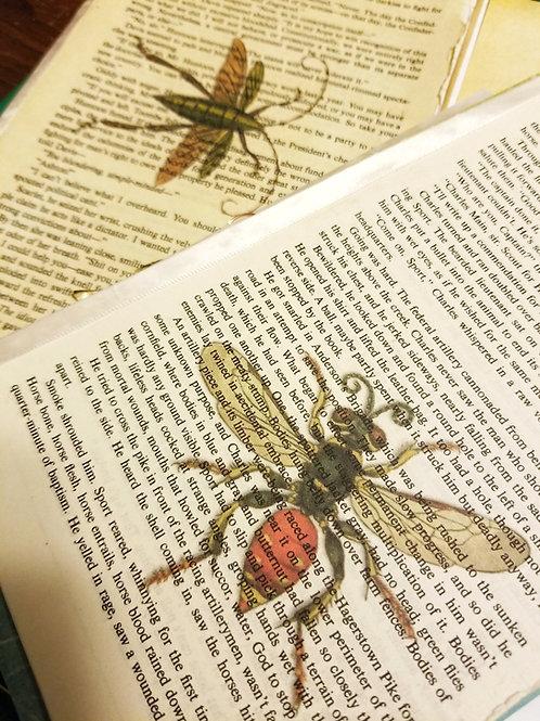 Vintage BugPrinted Book Pages