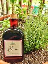 Bloom Syrup