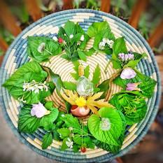 Herbal Ritual Bath
