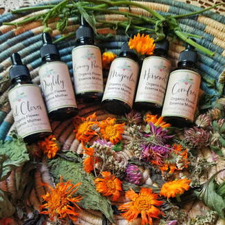 Flower Essence Mothers
