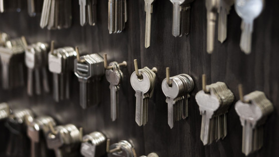 Benefits of Working With a Professional Locksmith in St Louis