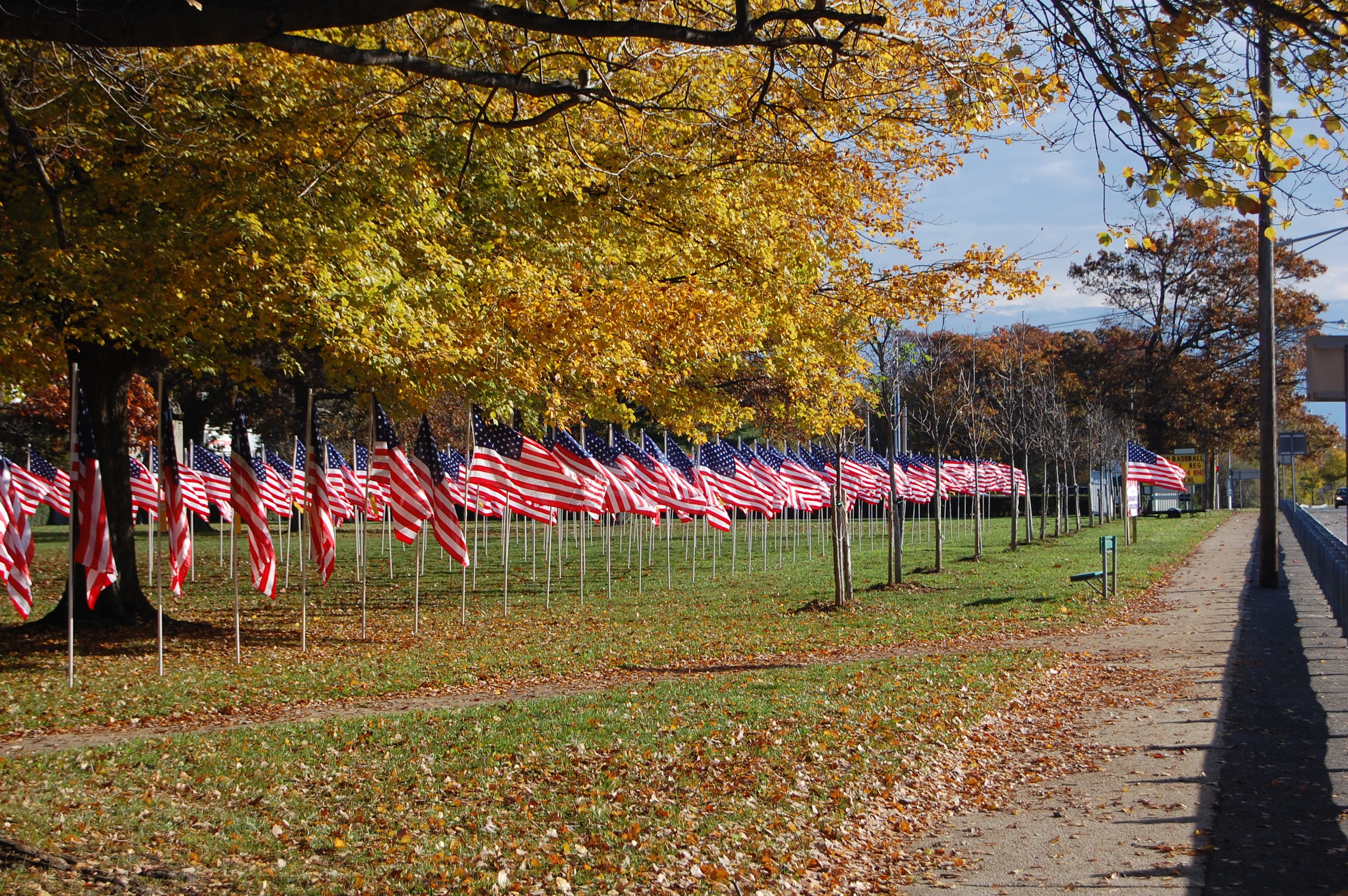 "Veterans Day ""Field of Honor"""
