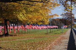 """Veterans Day """"Field of Honor"""""""