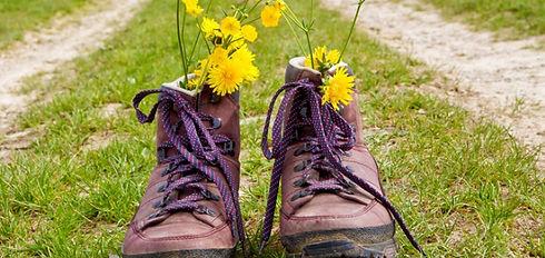 wandelschoenen-bovenkarspel1-20150306153
