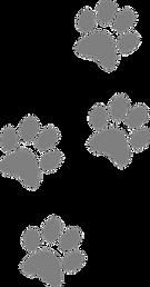 footprints-309158__340.png