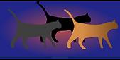 Katzen Hinweise.png