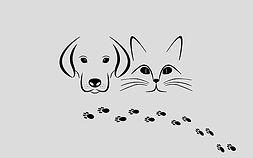 pets-2311693__340.jpg
