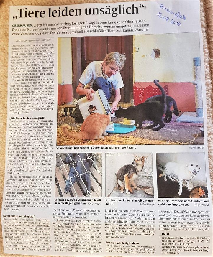 Zeitungsartikel.jpg