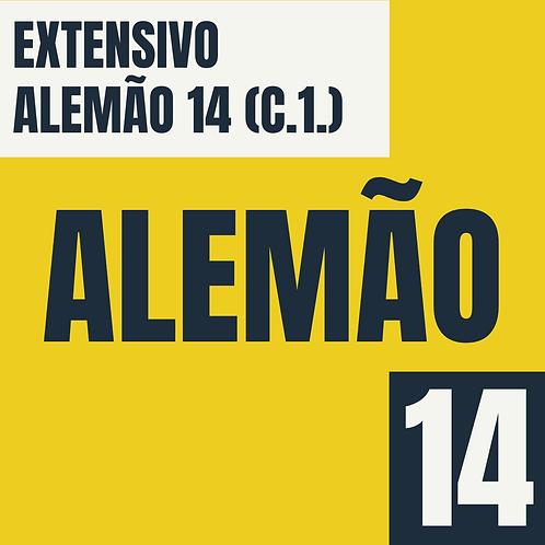 Alemão 14 (C1.1)
