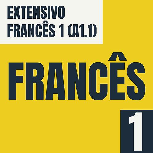 Francês 1 (A1.1)