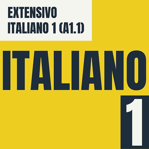 Italiano 1  (A1.1)