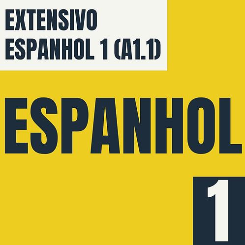 Espanhol 1 (A1.1)