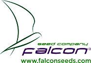 Falcon Seeds Co