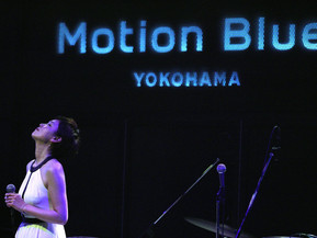 motion blue yokohama 公演から一年