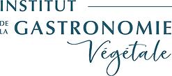 institut-v-logo.png