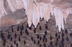 Inside the limestone cave 2.jpg