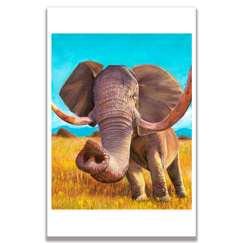 Elephant Poster Print