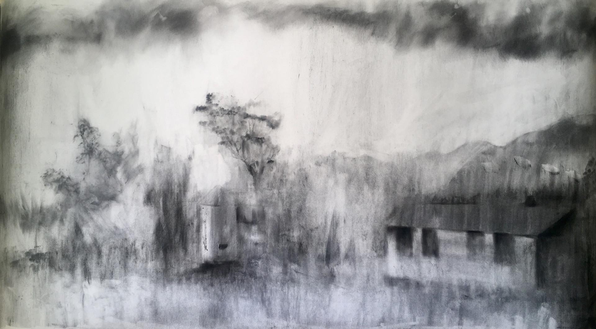 DWARS IN DIE WEG  2019 Charcoal on paper 71 x 130cm