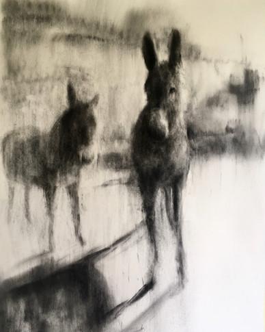 JAKOB EN ESAU 2018 Charcoal on cotton paper 100 x 70cm