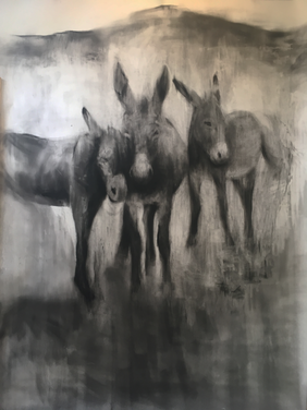 CEDERBERG 2017 Charcoal on paper 178 x 151cm