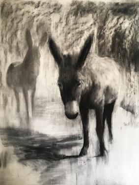 IN DIE SKADUWEE 2018 Charcoal on cotton paper 125 x 100cm