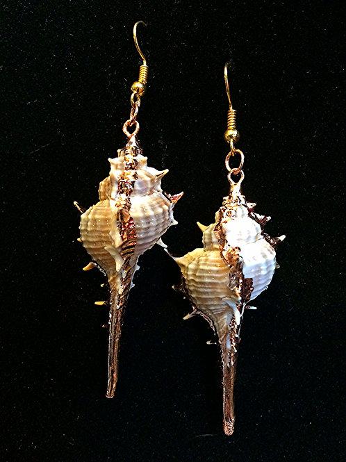 Seashell Earring