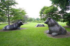 bronze bull statue13.jpg