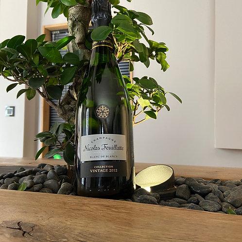 Champagne Nicolas Feuillatte Vintage