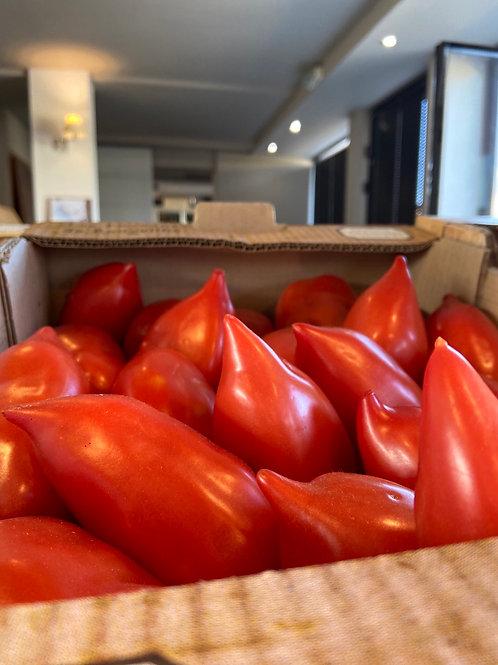 Tomates Torino