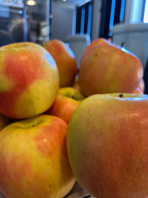 Pommes ZINGY