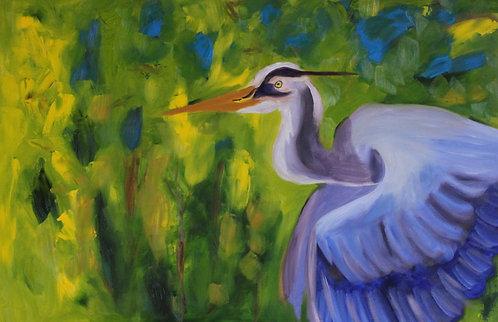 Great Blue Heron Adventure