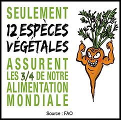 les_semances_paysannes_3.png