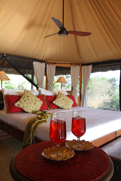 Luxury Safari Tents Siwandu Bush Camp Nyerere Tanzania