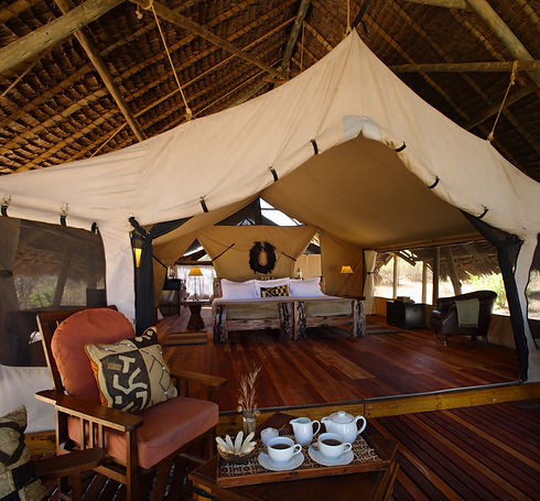 Luxurious Safari Tents Jongomero Ruaha Tanzania
