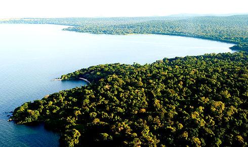 Rubondo-Island-Camp-Landscapes.jpg