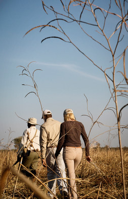 Chada Katavi Guided Walking Safari Tanza