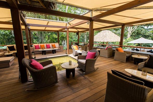 Sofas Canopy Rainforest Sundy Praia
