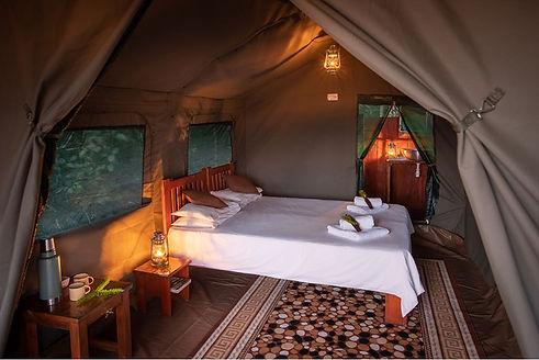 Louri Wild Camp Tent Loango Gabon