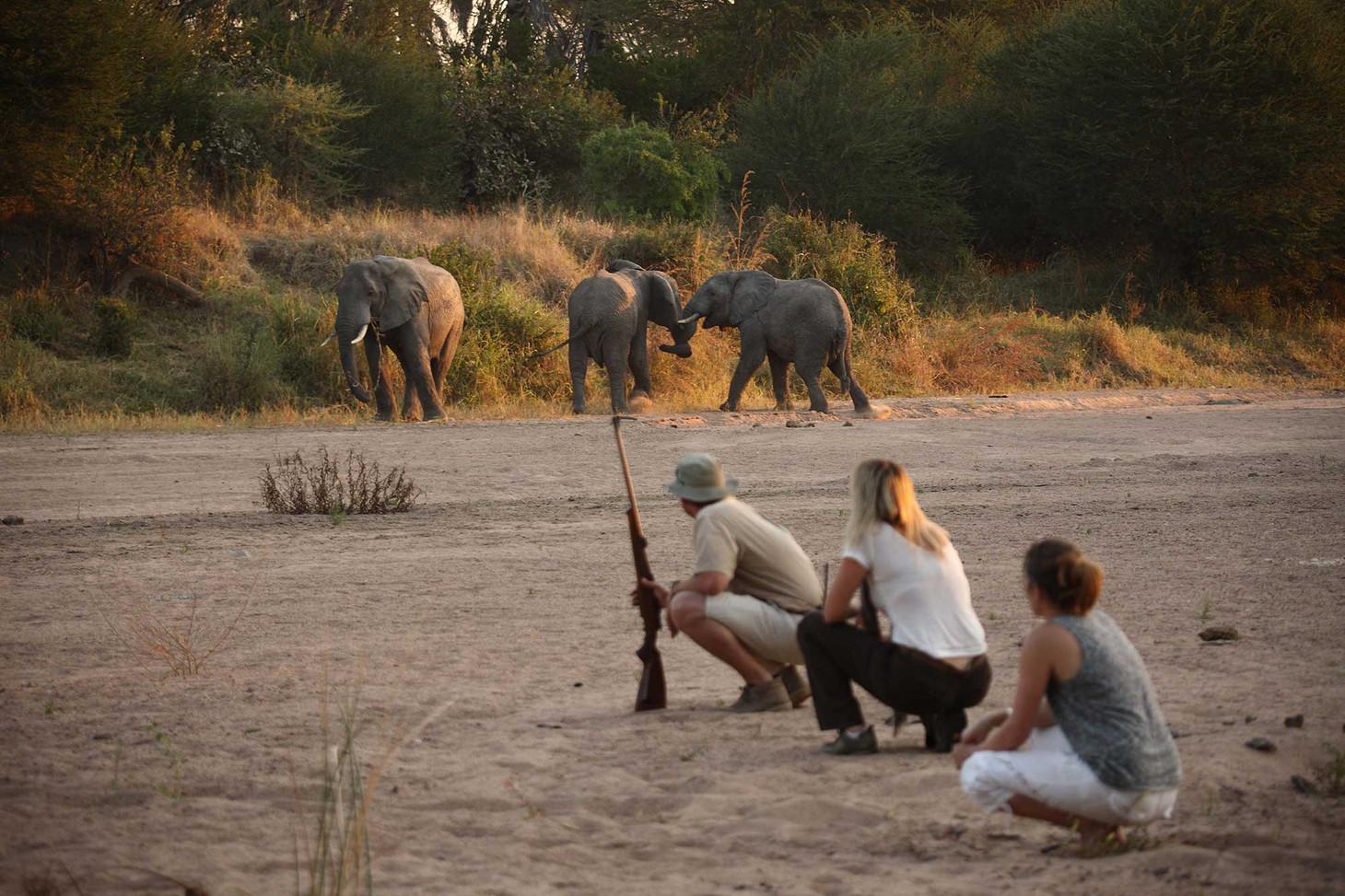 Walking Safari Siwandu Selous Tanzania