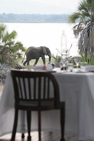 10 Night Bush Beach Safari Package Nyerere Fanjove