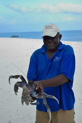 Tanzania - Fanjove Island - Crab