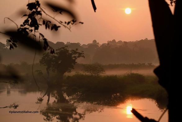 Akaka sunrise Loango Gabon.JPG