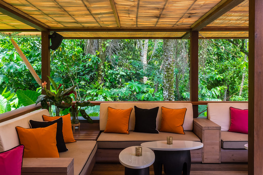Sofas in the Rainforest Canopy