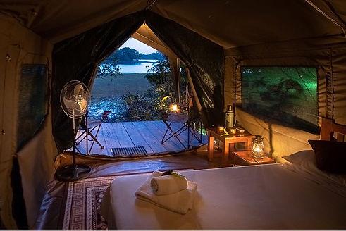 Louri Wild Camp Loango Gabon