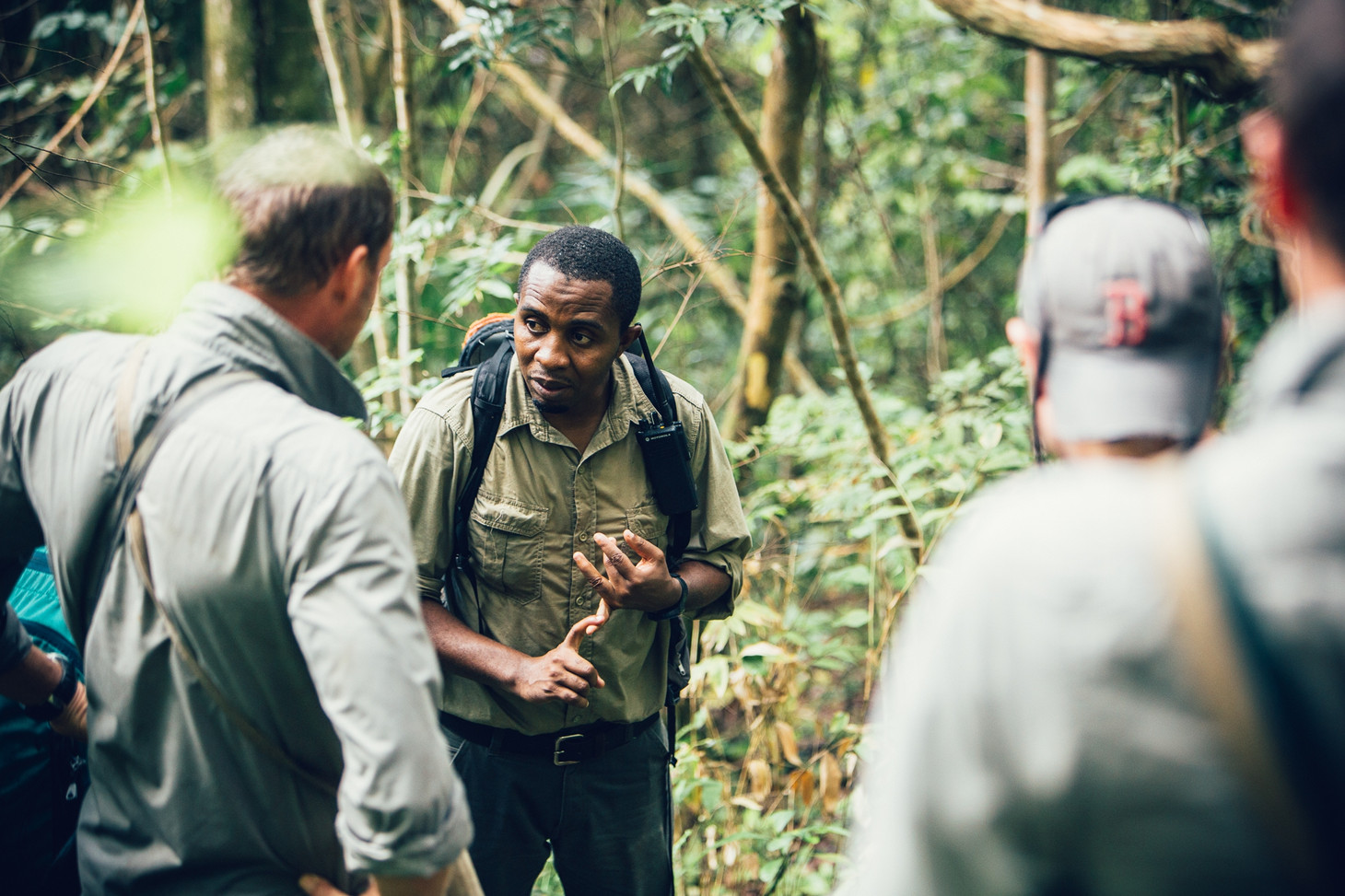 Chimpanzee Guide Greystoke Mahale Tanzania
