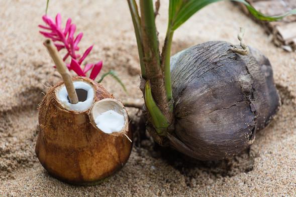 Fresh Beach Coconuts Sundy Praia