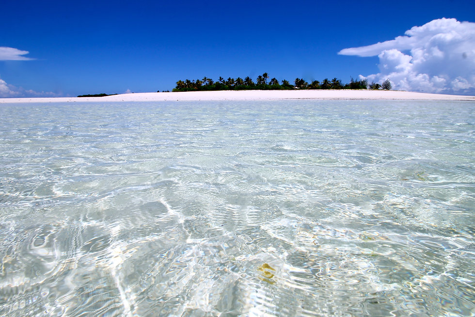 Tanzania Fanjove Island Crystal Clear Indian Ocean Tanzania